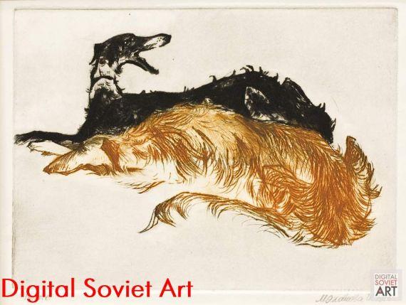 Russian Greyhounds – Русские борзые