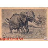 African Elephant – Африканский слон
